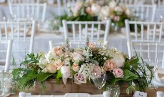 Barbara Frew - Wedding Celebrant